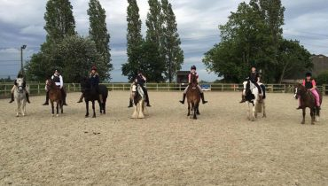 Group shot - tackless riding