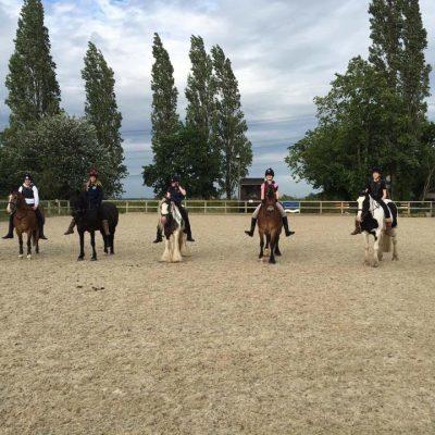 Group shot - tackless riding