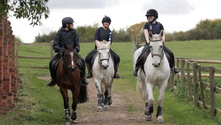 Young Equestrians